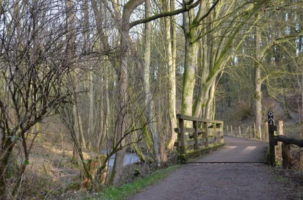 Ein Weg voller Ruhe. Der Neanderlandsteig. ©entdecker-greise.de