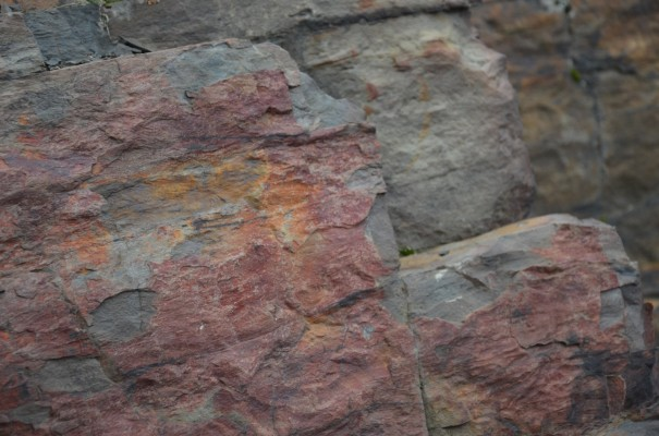 Felsenschönheiten am Rotweinwanderweg © entdecker-greise.de