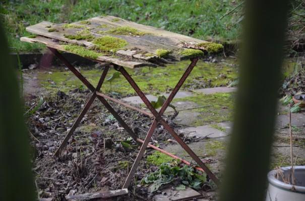 Natur-Schönheit ©entdecker-greise.de