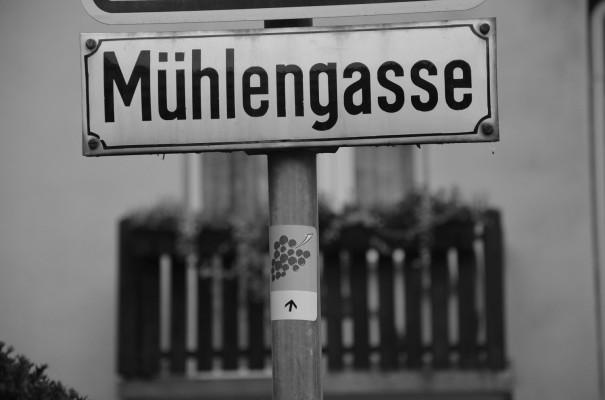 Viele Wege führen zum Rotweinwanderweg © entdecker-greise.de