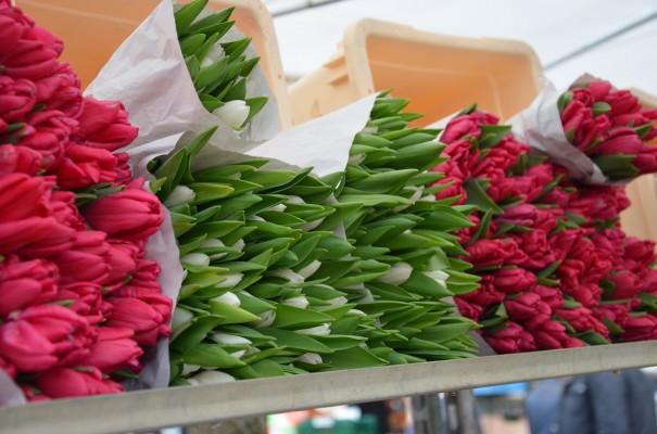 Blumenmarkt auf dem Wochenmarkt Neukölln ©entdecker-greise.de