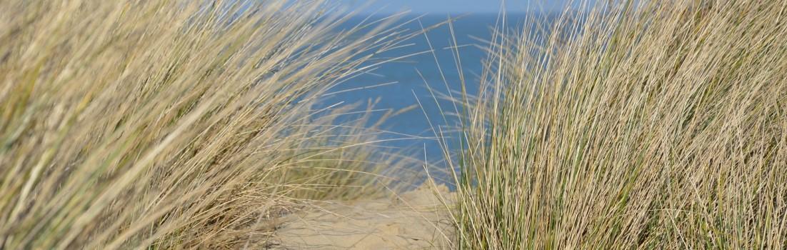 Strandfreuden an der Nordseeküste ©entdecker-greise.de