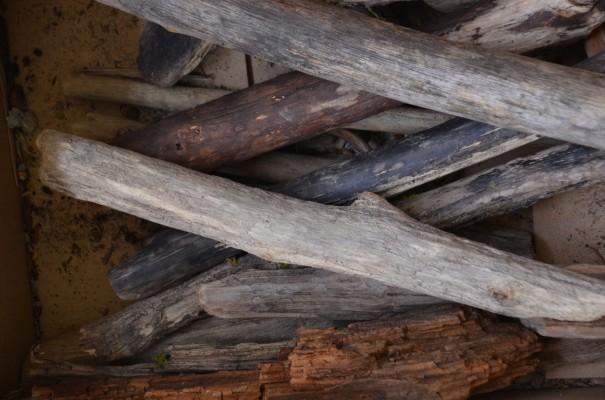 Schönheit liegt immer im Auge des Betrachters - Treibholz für den Skulpturenbau ©entdecker-greise.de