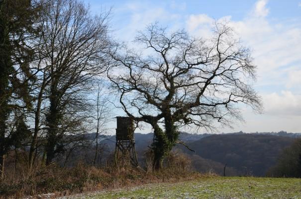 Auf den Höhen von Romaney ©entdecker-greise.de
