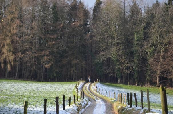 Hinab geht`s in`s schöne Scherfbachtal ©entdecker-greise.de