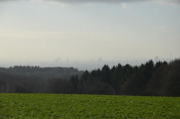 Weitsicht über die Kölner Bucht ©entdecker-greise.de