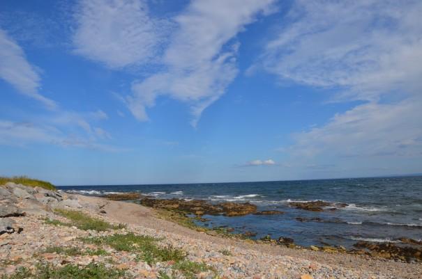 Die etwas rauhere Küstenvariante am Dornoch Firth ©entdecker-greise.de