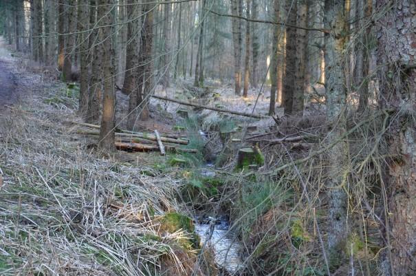 ... idyllischen Bachläufen ©entdecker-greise.de