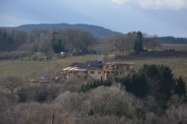 Blick auf das Hundertwasserhaus von Försters Weinterassen ©entdecker-greise.de