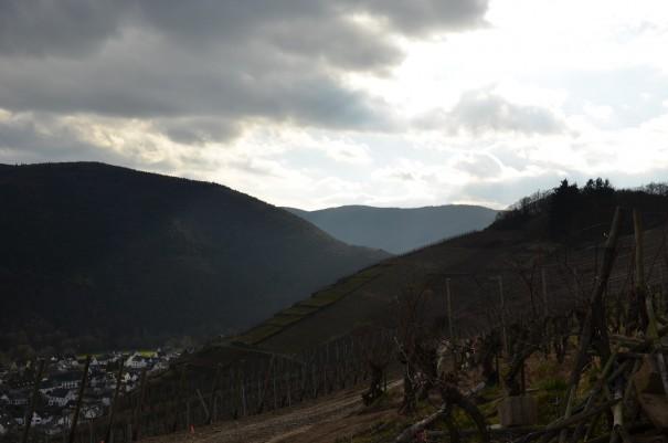 Laßt Euch nicht vom Wetter einschüchtern, der Rotweinwanderweg ist bei jedem Wetter en Genuß! ©entdecker-greise.de