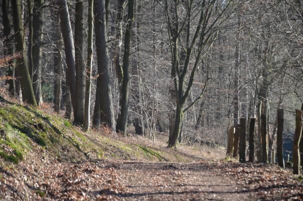 Niedergützenbach ist bald erreicht ©entdecker-greise.de