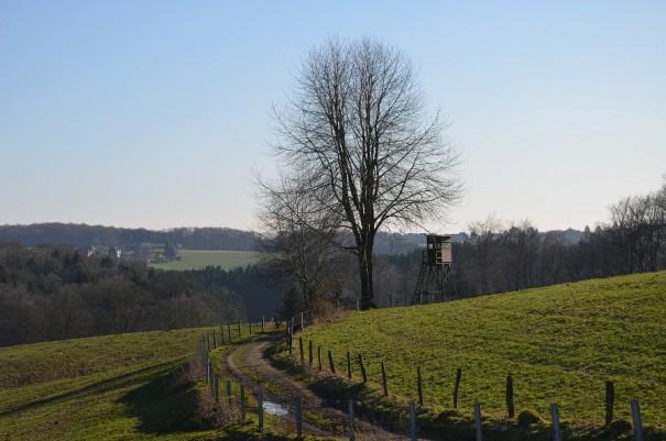 Wunderbar abwechslungsreiche Streckenführung auf dem Bergischen Weg, zwischen Overath und Much ©entdecker-greise.de