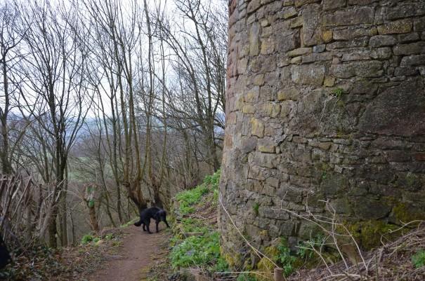 An Burg Frauenstein vorbei geht es weiter Richtung Würzweiler ©entdecker-greis.de