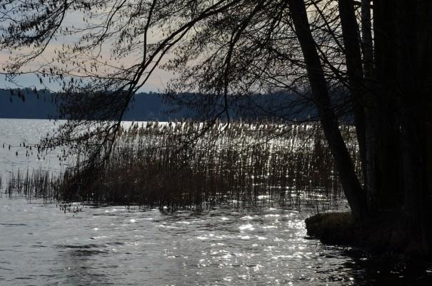 Ruhe, Frieden und Entspannung am Scharmützelsee ©entdecker-greise.de