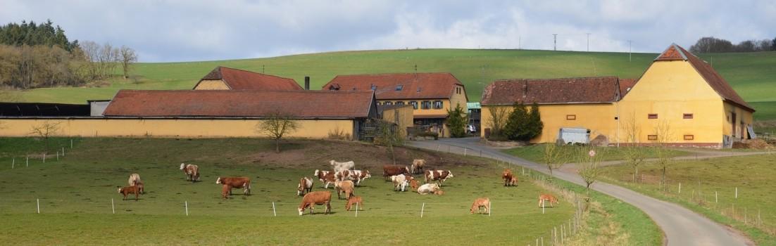 Wunderschöner Hof im Falkensteiner Tal ©entdecker-greise.de