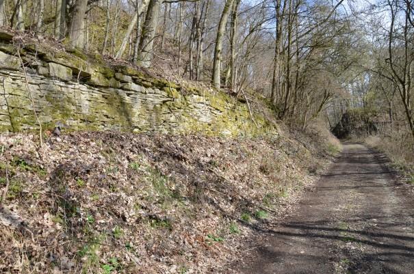 Alten Römerpfaden folgen ... ©entdecker-greise.de