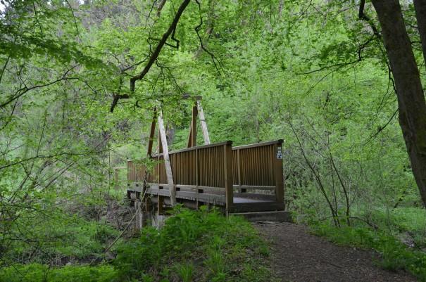 Professionell organisiertes und qualitativ hochwertiges Wandervergnügen beim #TTwandern auf dem Westerwald Steig ©entdecker-greise.de