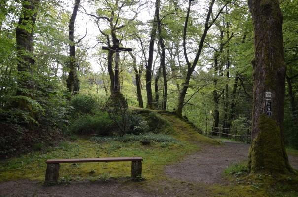 Einer der zahlreichen Orte, die auf dem Westerwald Steig zur inneren Einkehr einladen #TTwandern ©entdecker-greise.de
