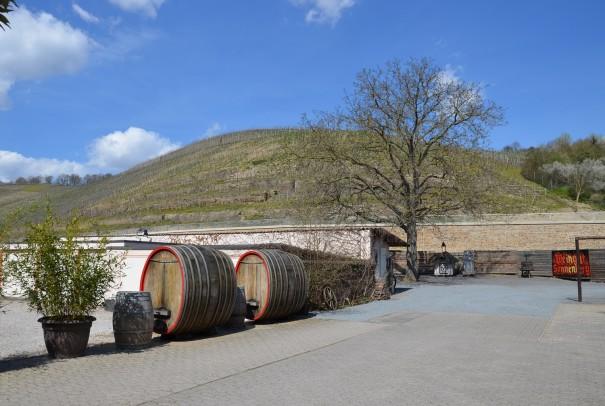 Ankunft auf dem Weingut Sonnenberg in Bad Neuenahr ©entdecker-greise.de