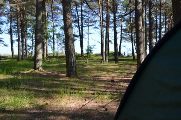 Und so idyllisch kann man im Feriencenter Sjosanden sein Zelt aufbauen ... einfach nur herrlich! ©entdecker-greise.de