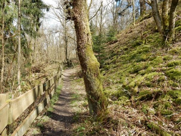 An manchen Stellen wird der Steinhauerpfad zusätzlich mit Abgrenzungen gesichert. ©entdecker-greise.de