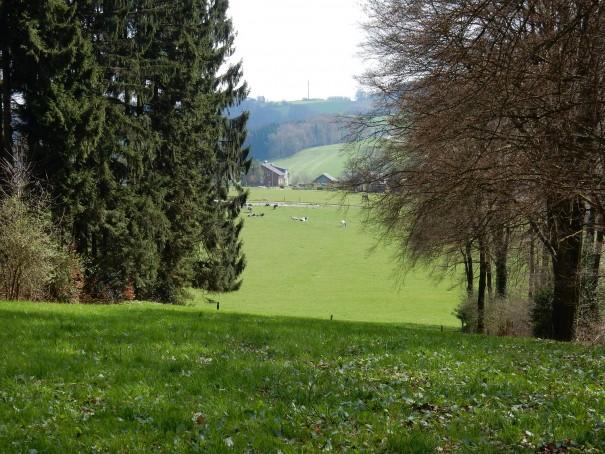 Idyllische Aussichten von der Wasserlandroute im Bergischen Land. ©entdecker-greise.de