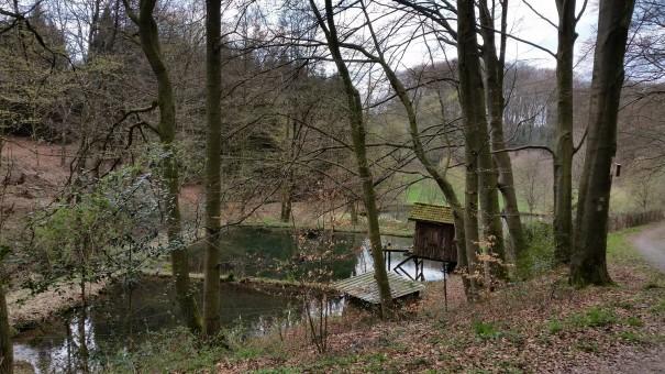 Idyllische Wegführung auf der Wasserlandroute durch das Bergische Land. ©entdecker-greise.de