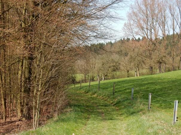 Wanderimpressionen von der Wasserlandroute über die Dhünnthahöhen ©entdecker-greise.de
