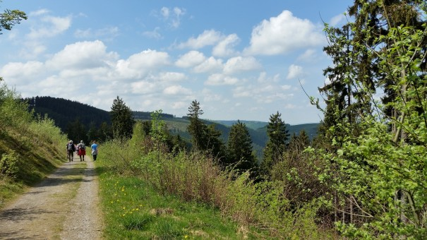 Mit großen Schritten wandern wir der Mittagsrast entgegen. ©www.entdecker-greise.de
