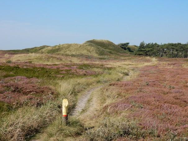 Ruhe und Erholung pur im Nationalpark Texel. ©www.entdecker-greise.de