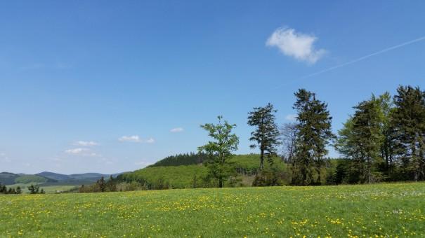 Wanderbares Sauerland ... und es gibt noch so viel zu entdecken! ©www.entdecker-greise.de